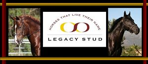 Legacy Stud