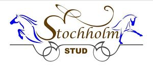 Stochholm Stud