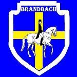 Brandbach-Stud.jpg