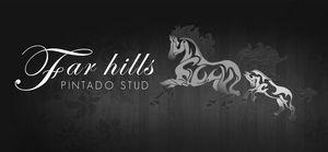 Far Hills Pintado Stud